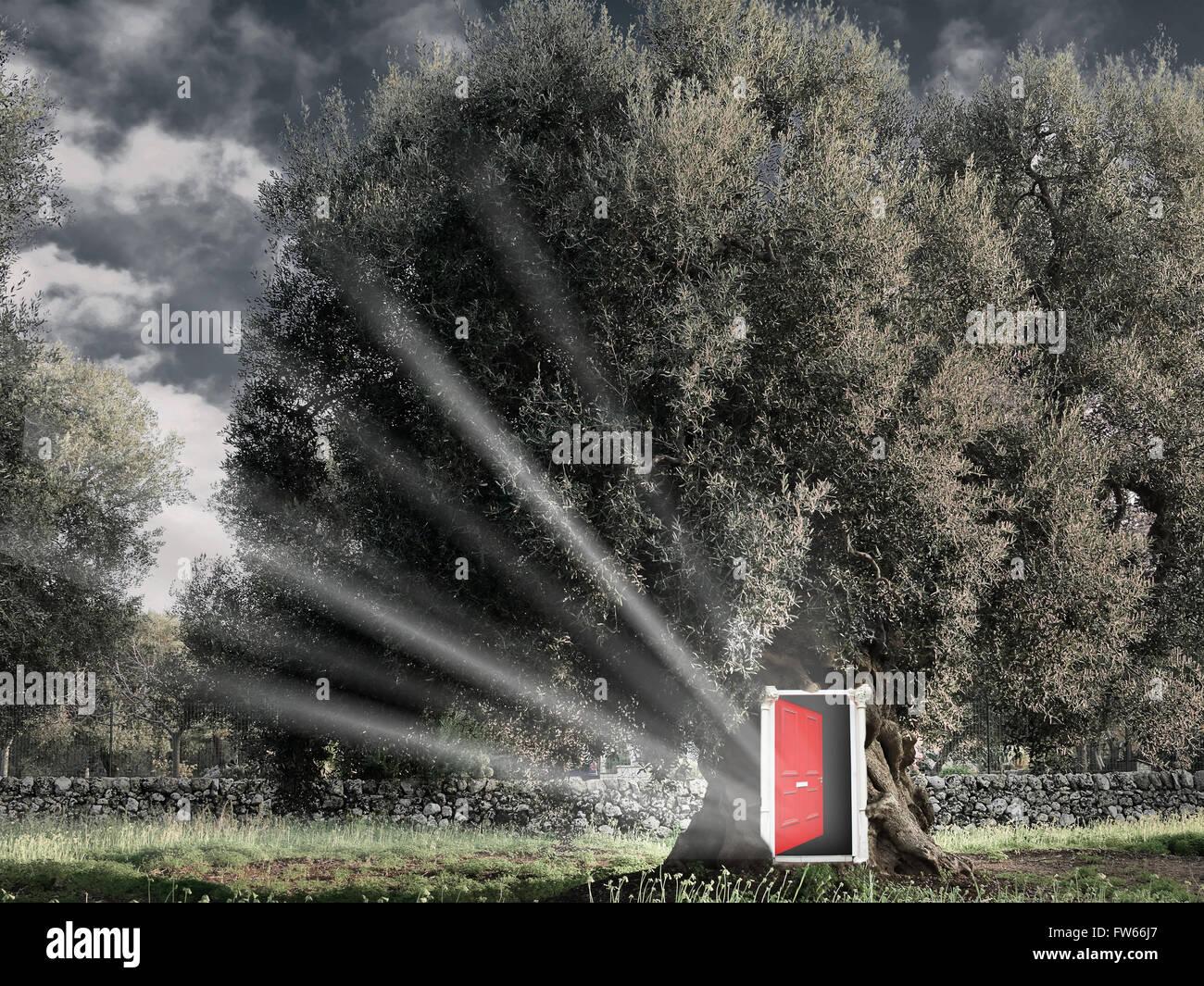 Abra la puerta roja de fantasía en el árbol. Imagen De Stock