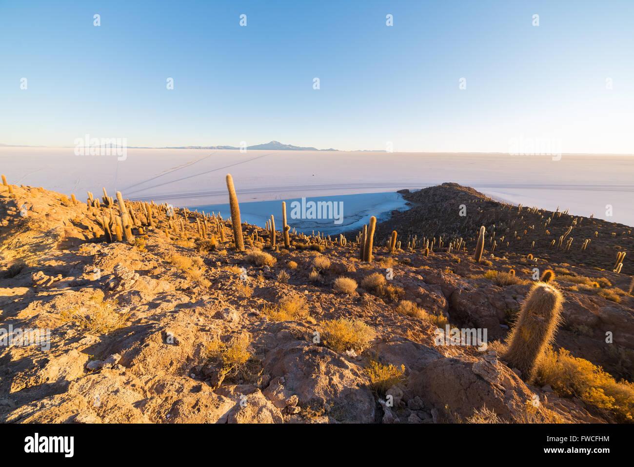 Amplio ángulo de visión del Salar de Uyuni, uno de los destino más importante en Bolivia. Toma al Imagen De Stock