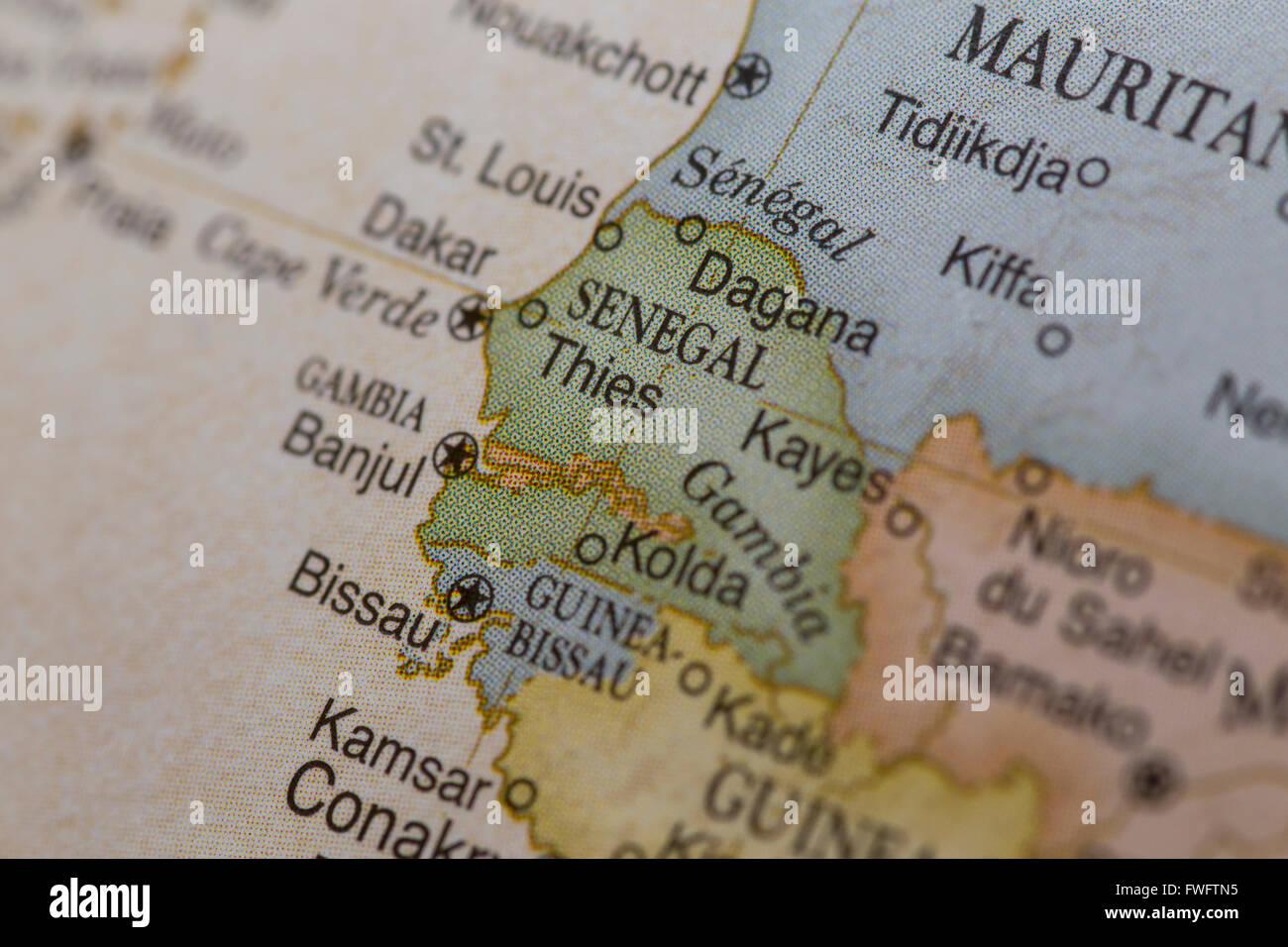 Macro de Senegal Imagen De Stock