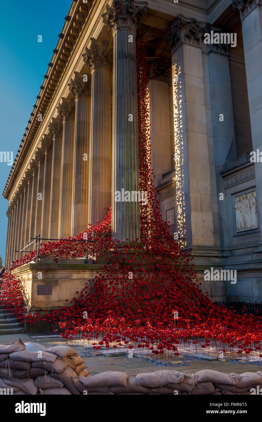 """""""Lloro"""" de la ventana de instalación de amapola en st.George's Hall, Liverpool Imagen De Stock"""