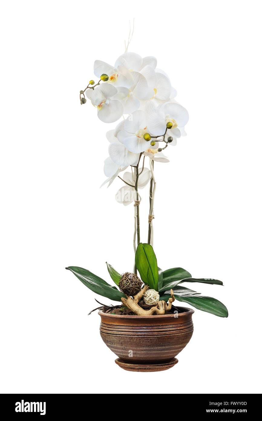 Arreglo Floral De Orquídeas Artificiales Flores En Maceta De
