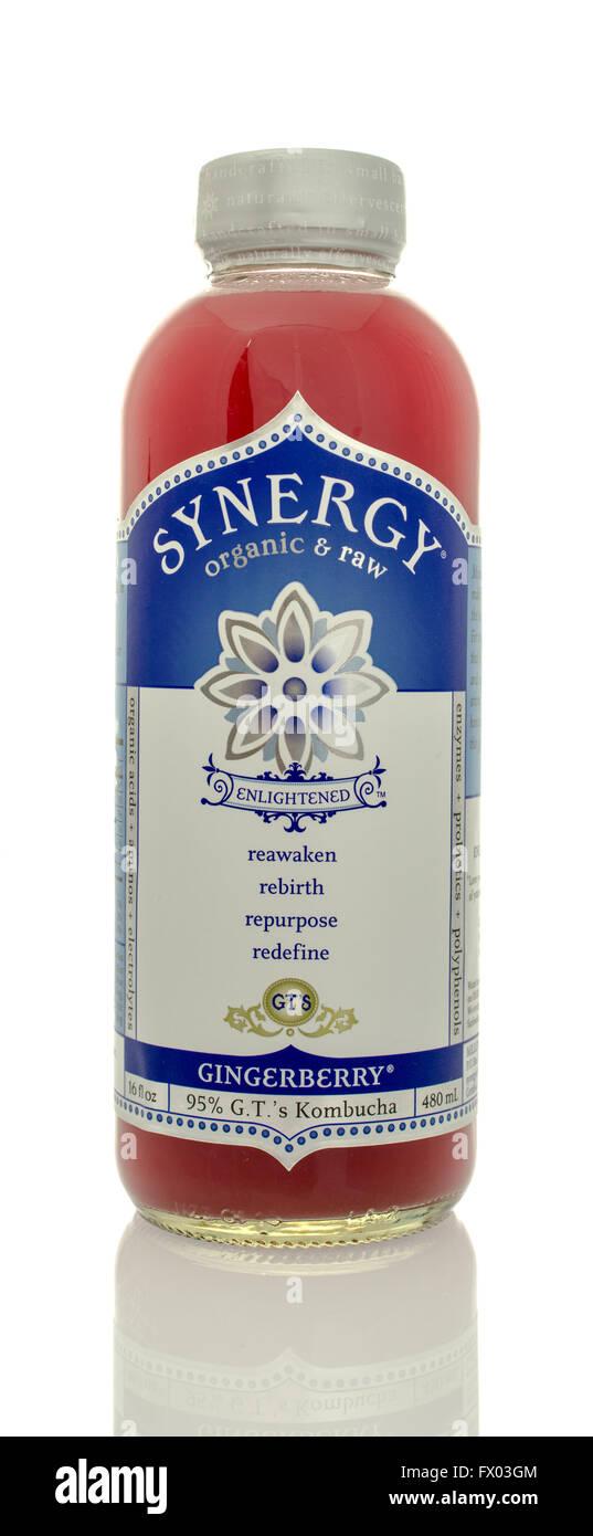Winneconne, WI - 5 de marzo de 2016: una botella de sinergia y materias orgánicas bebida de sabor gingerberry Imagen De Stock