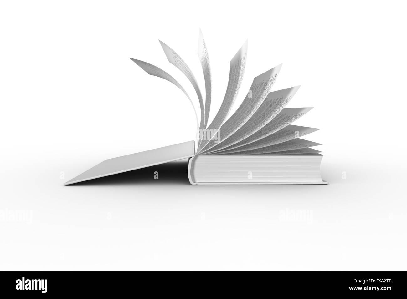 Libro abierto Imagen De Stock