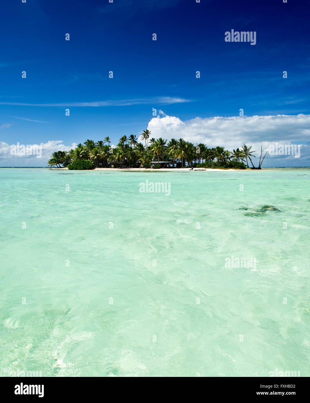 Tropical o deshabitada isla desierta con playa y palmeras en la Laguna Azul dentro del atolón de Rangiroa, Imagen De Stock