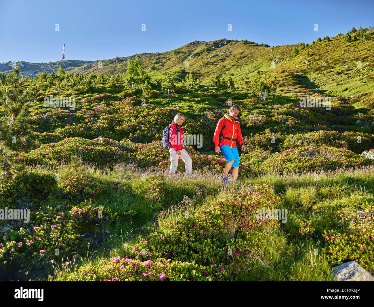 Las mujeres de 35-40 años y 40-45 años hombre senderismo, Zirbenweg, Patscherkofel, Innsbruck, Tirol, Austria Foto de stock