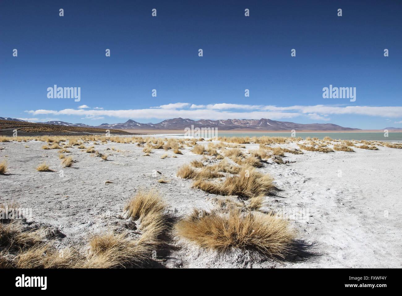 Bolivia - 20/08/2013 - Bolivia / Salar de Uyuni / Uyuni - desierto de Sal, Uyuni - Sandrine Huet / Le Pictorium Imagen De Stock