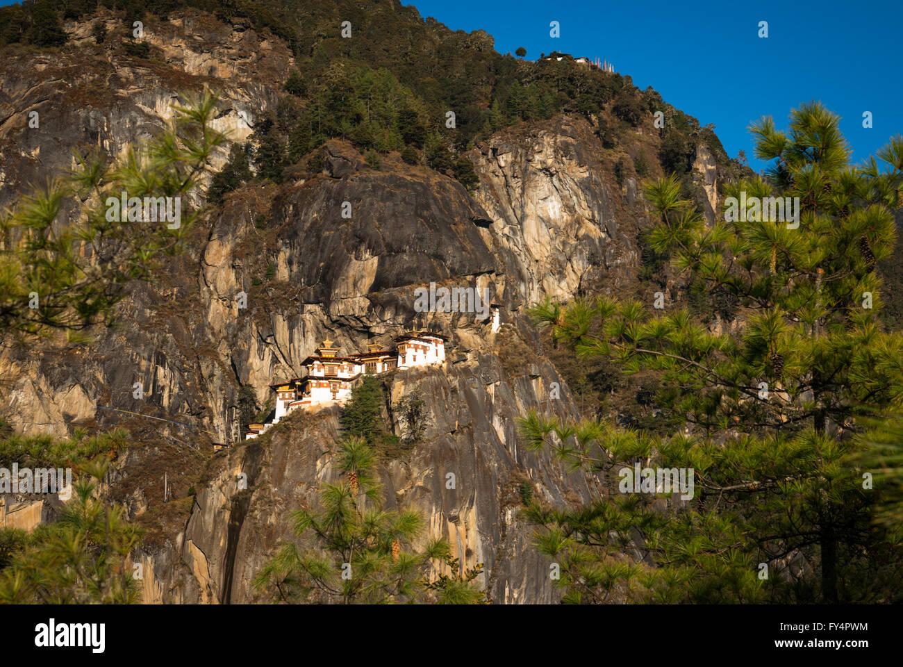 Vista a través de los pinos a Tiger's Nest (Monasterio de Taktshang), encaramada sobre un acantilado cerca de Paro, Bhután Foto de stock