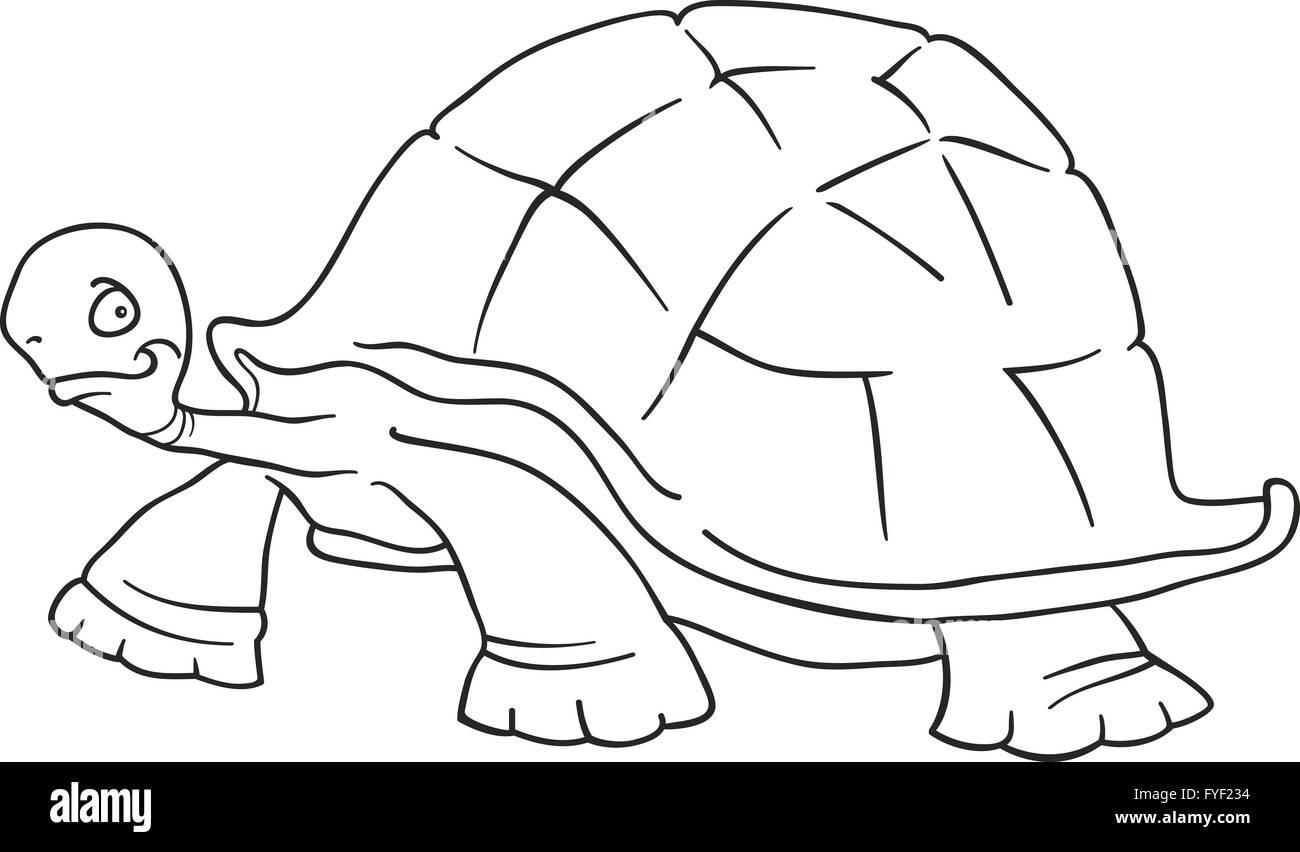 Cartoon Turtle Imágenes De Stock & Cartoon Turtle Fotos De Stock ...