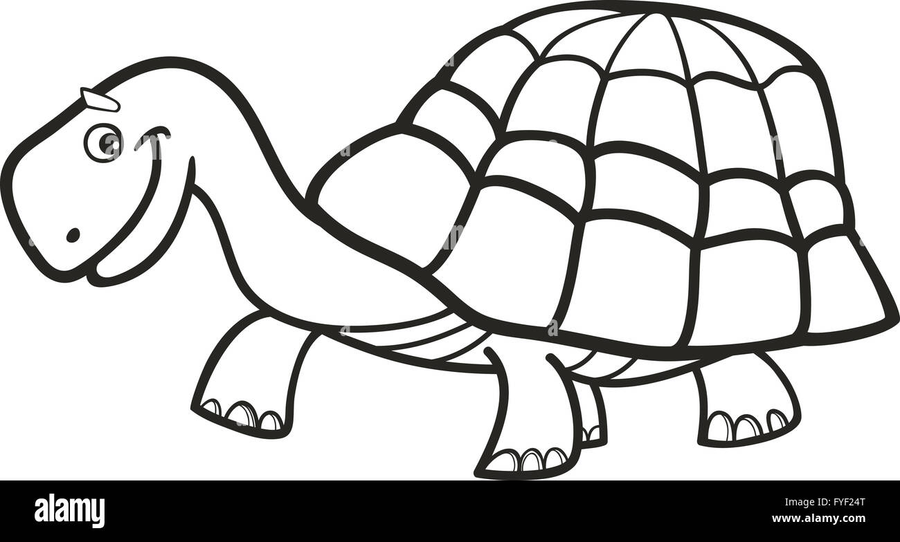 Tortuga Para Colorear Foto Imagen De Stock 102978536 Alamy