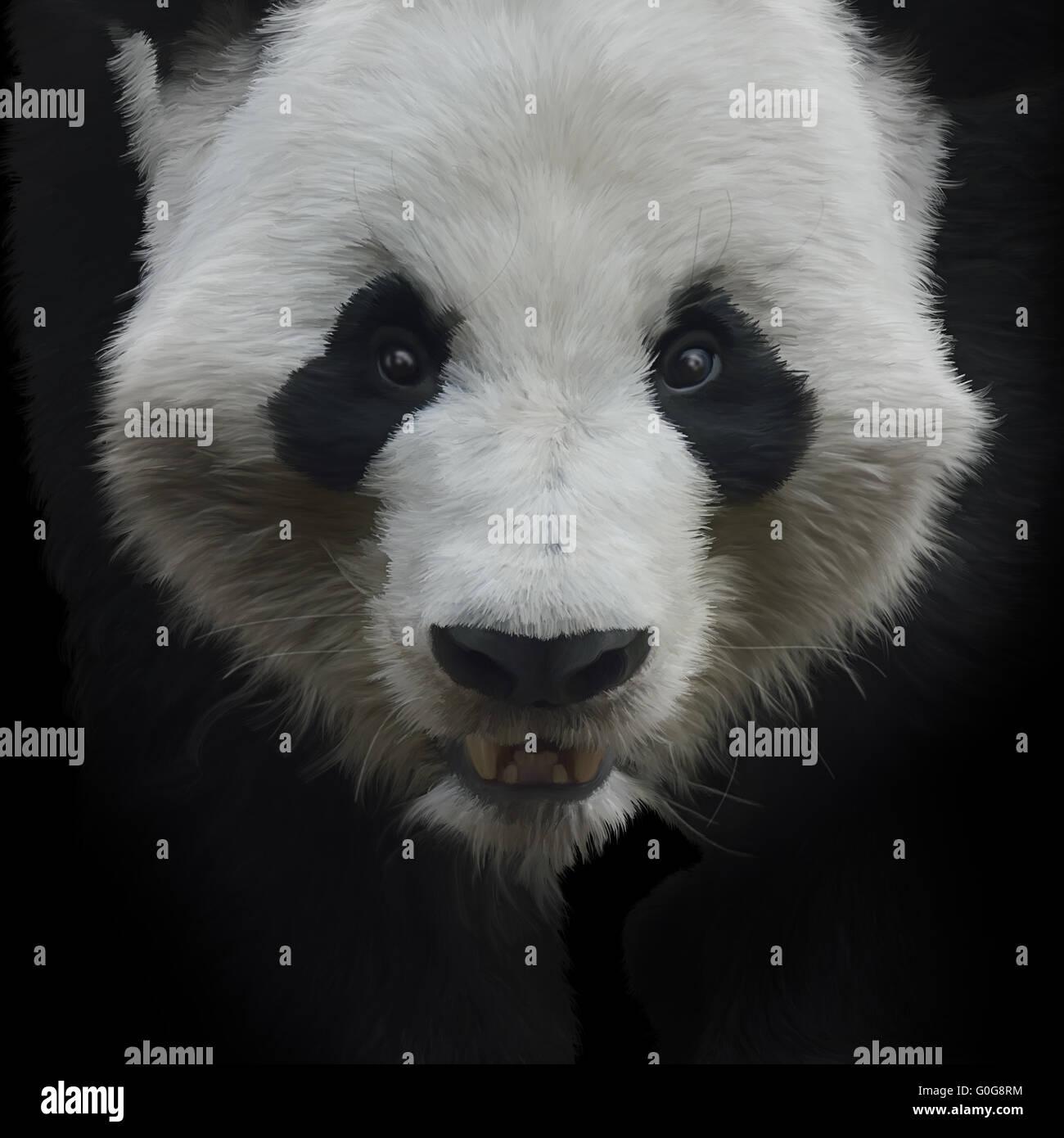 Oso Panda gigante Imagen De Stock