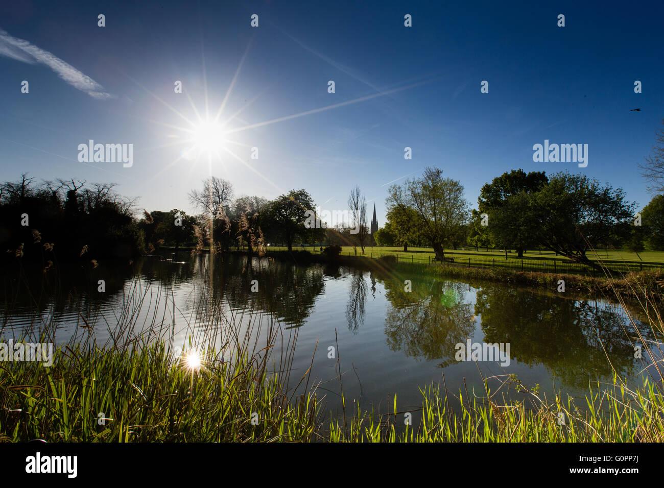 Londres, Reino Unido, 4 de mayo de 2016. Preciosa y soleada mañana en Parque Clissold, Stoke Newington, Hackney, Londres, Reino Unido. Copyright Carol efecto muaré/Alamy Live News Foto de stock