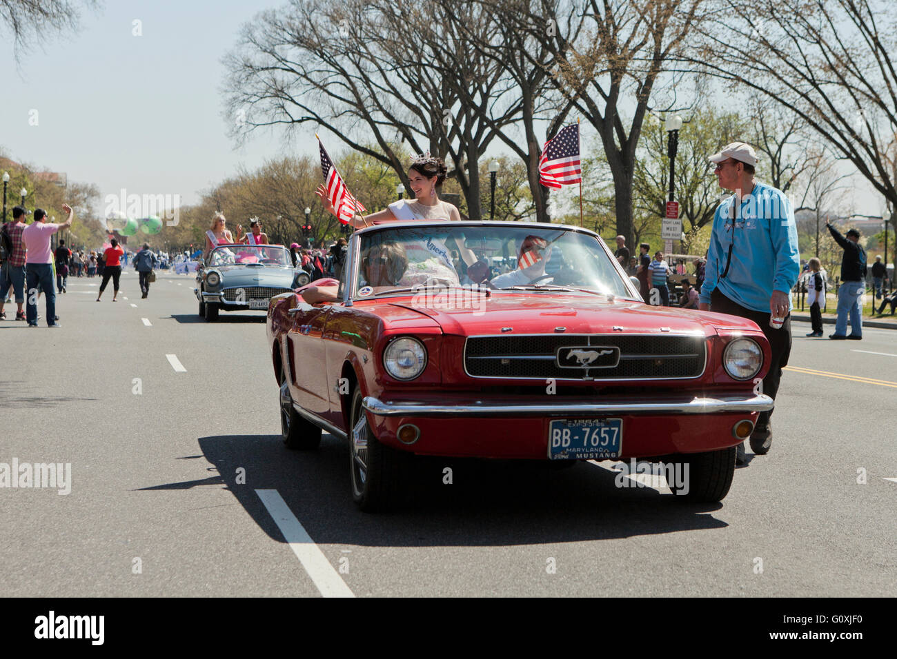 Muscle El Descapotable De Ford Mustang Del Coche, 1965 Y A