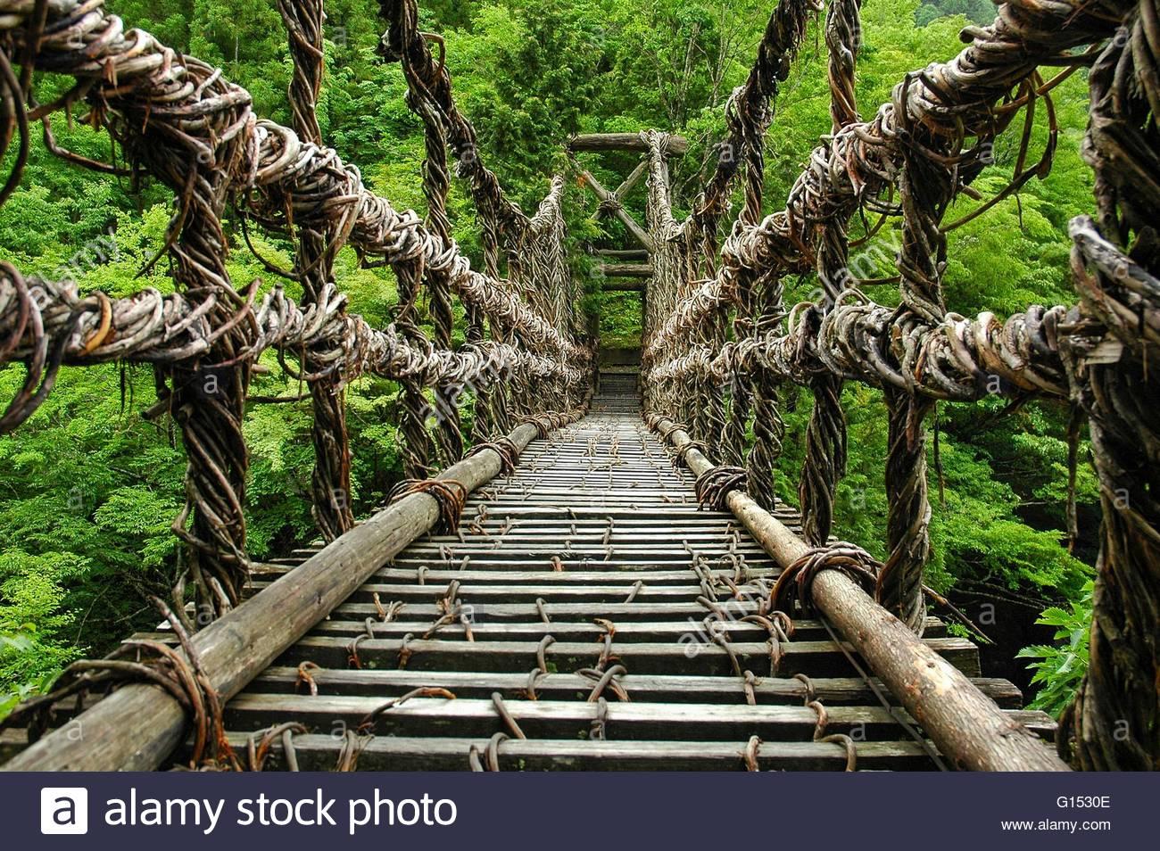Liana And Wood Suspension Bridge Imágenes De Stock