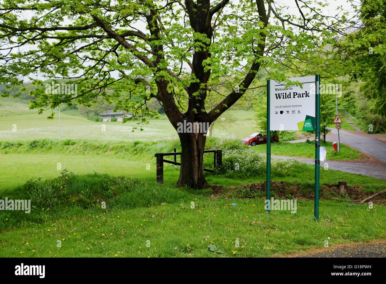Brighton, Reino Unido. El 11 de mayo, 2016. Parque salvaje en Brighton donde los cuerpos asesinados de colegialas Foto de stock