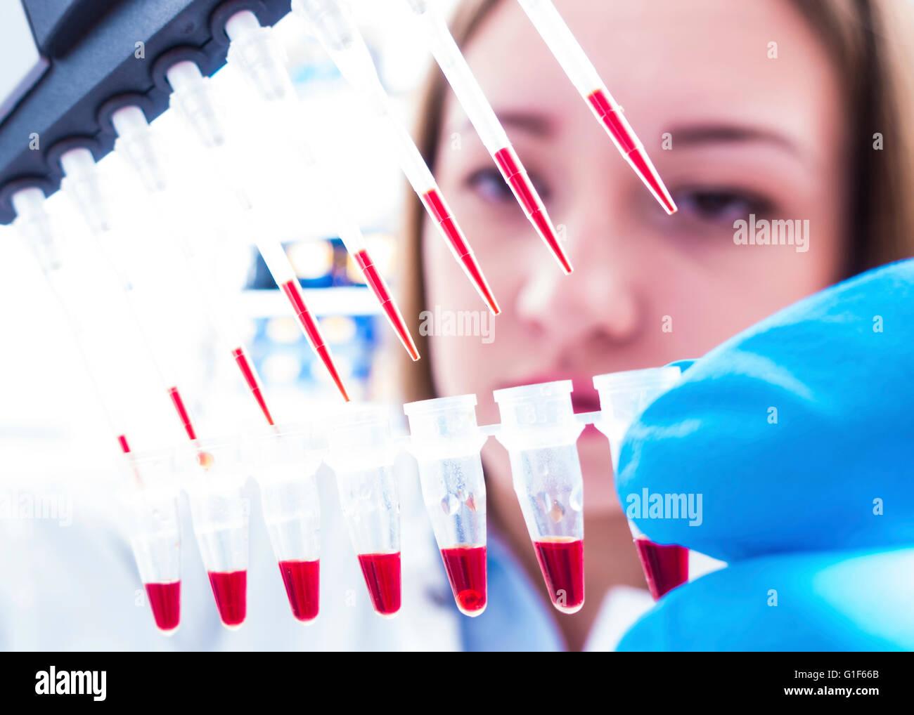 Modelo liberado. Técnico de laboratorio femenino mediante micro pipeta. Foto de stock