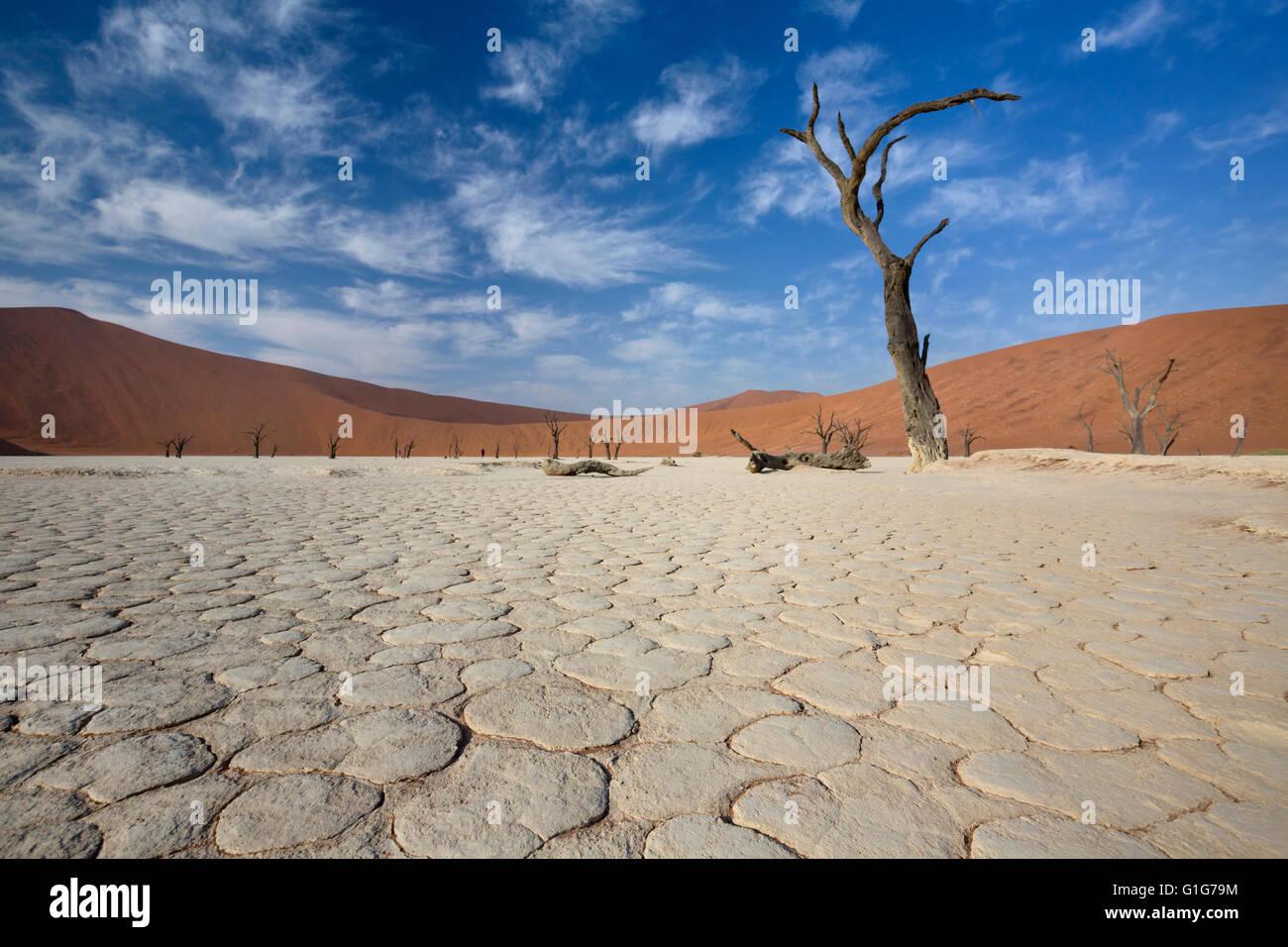 Vista del valle de la muerte en el desierto de Namib, en Sossusvlei, Namibia Imagen De Stock