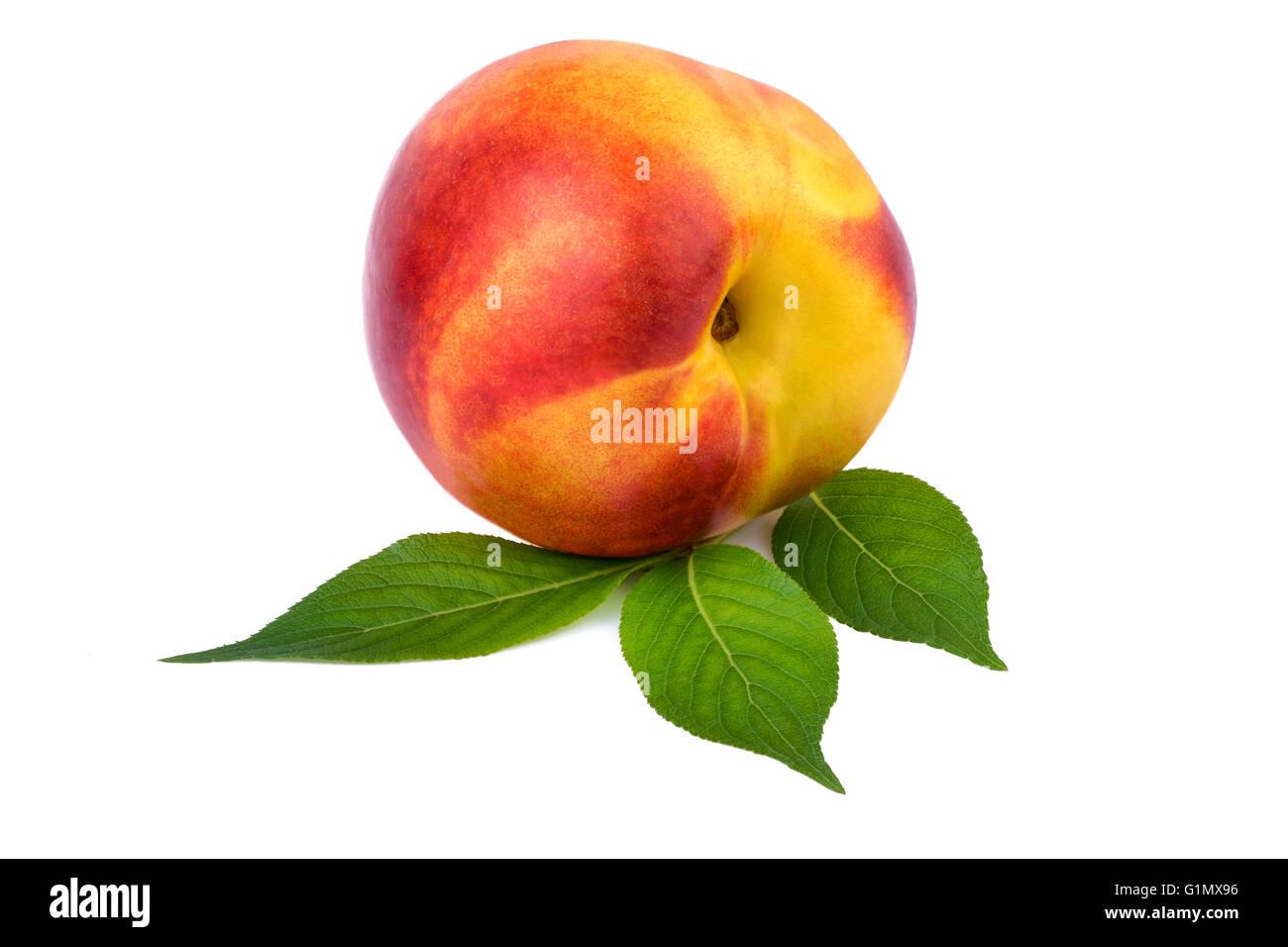Uno de los frutos de nectarina en blanco Imagen De Stock