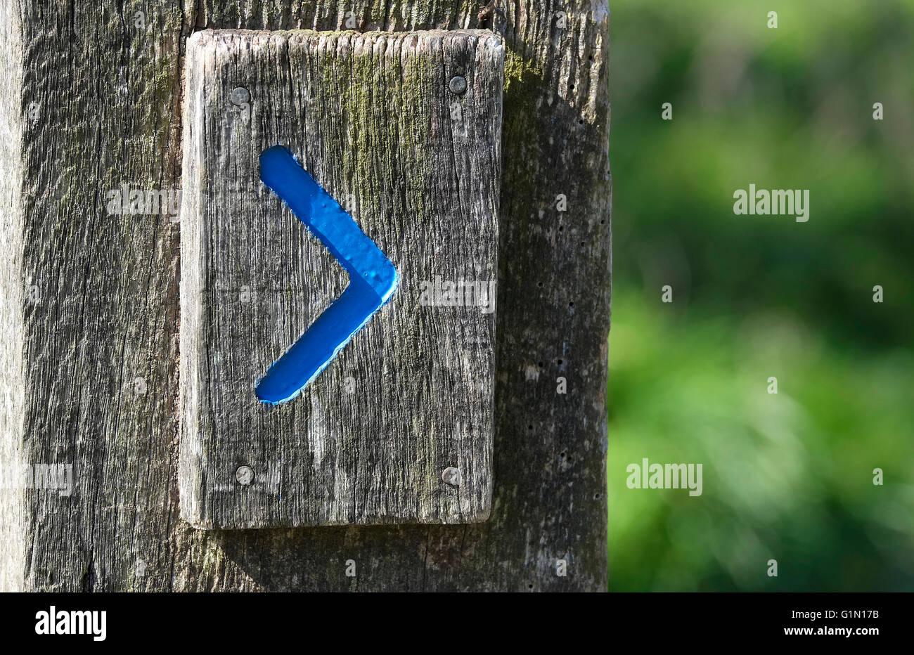 Sendero azul la flecha de dirección en viejo de madera post Imagen De Stock