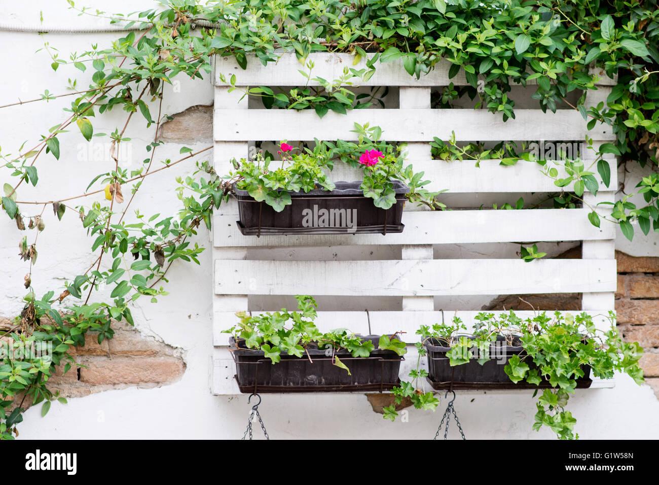 Ideas interesantes para la jardiner a utilizando palets industriales por colgar de la pared para - Macetas de colgar ...