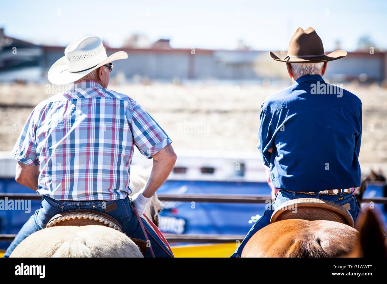 Wickenburg, USA - Febrero 5, 2013: Los jinetes compiten en un equipo roping competencia en Wickenburg, Arizona, Foto de stock