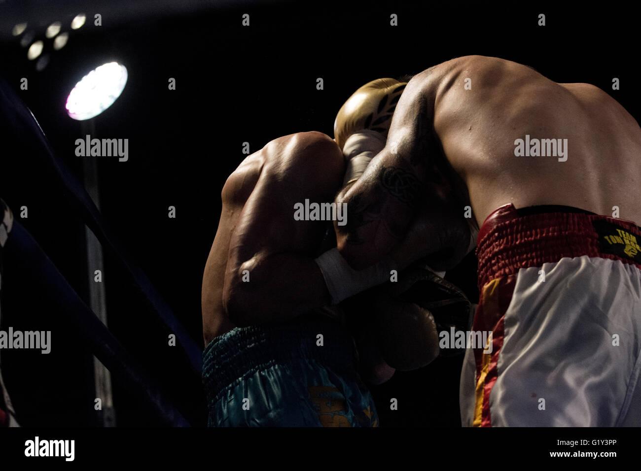 Gijón, España. 21 de mayo, 2016. Juancho González y Marc Vidal durante el combate de boxeo de peso Imagen De Stock
