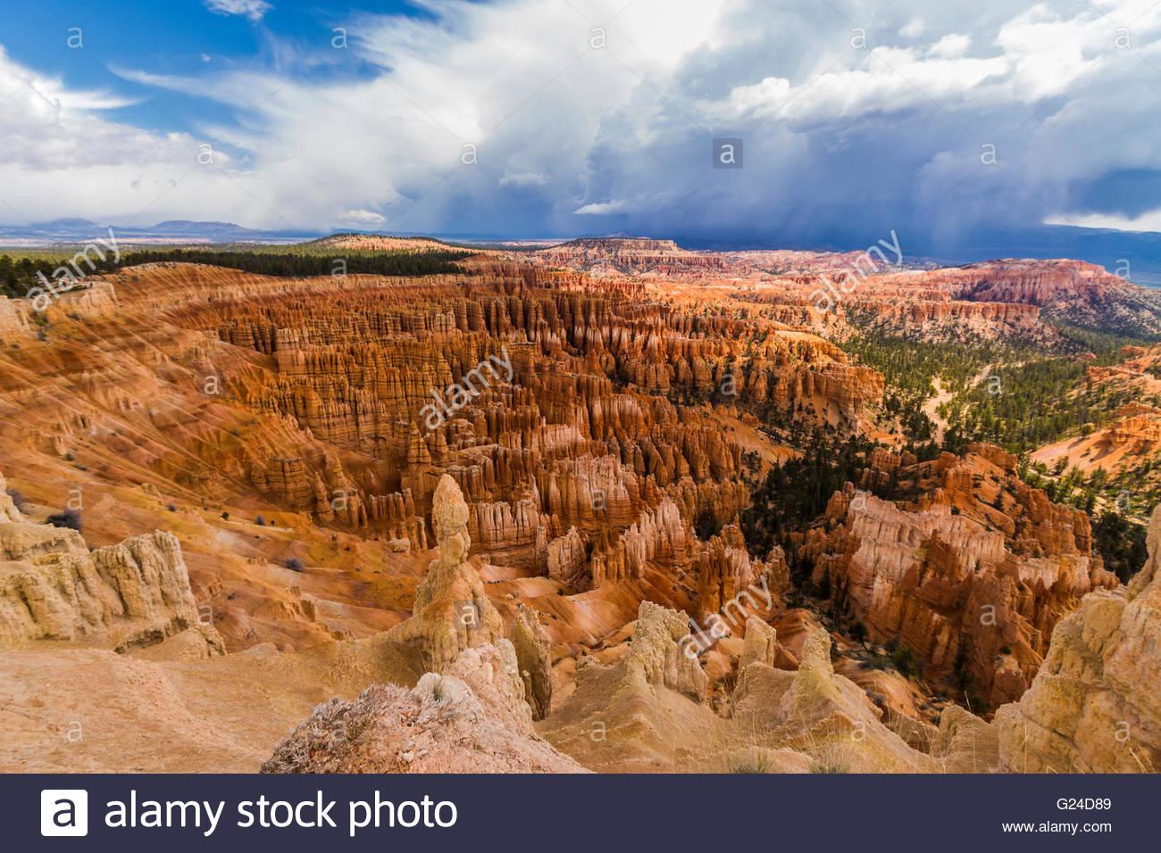 El Parque Nacional de Bryce Canyon Hoodoos Imagen De Stock
