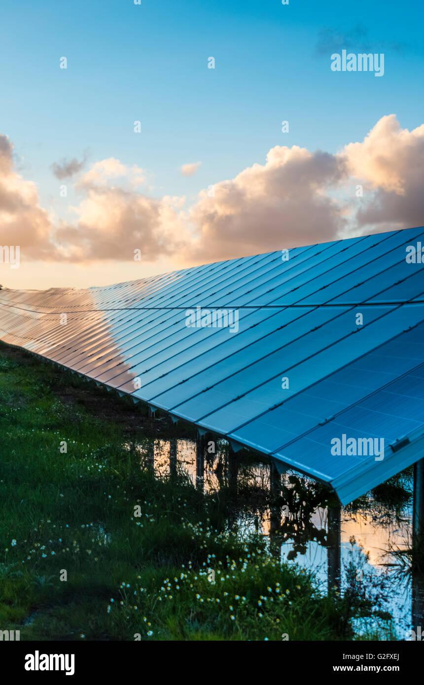 Los paneles solares con el cielo nublado para energía alternativa Imagen De Stock