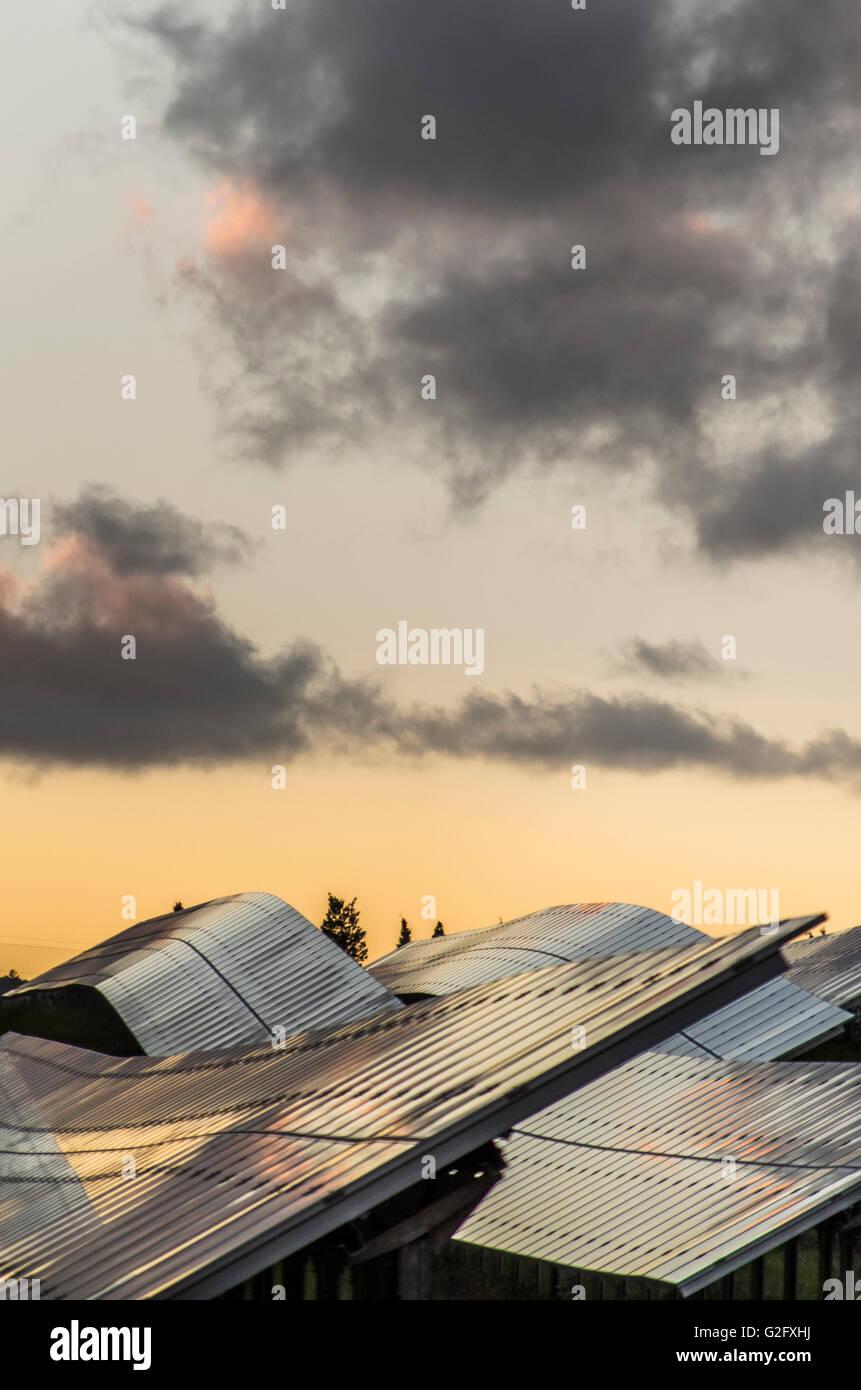 Los paneles solares al atardecer con cielo nublado Imagen De Stock
