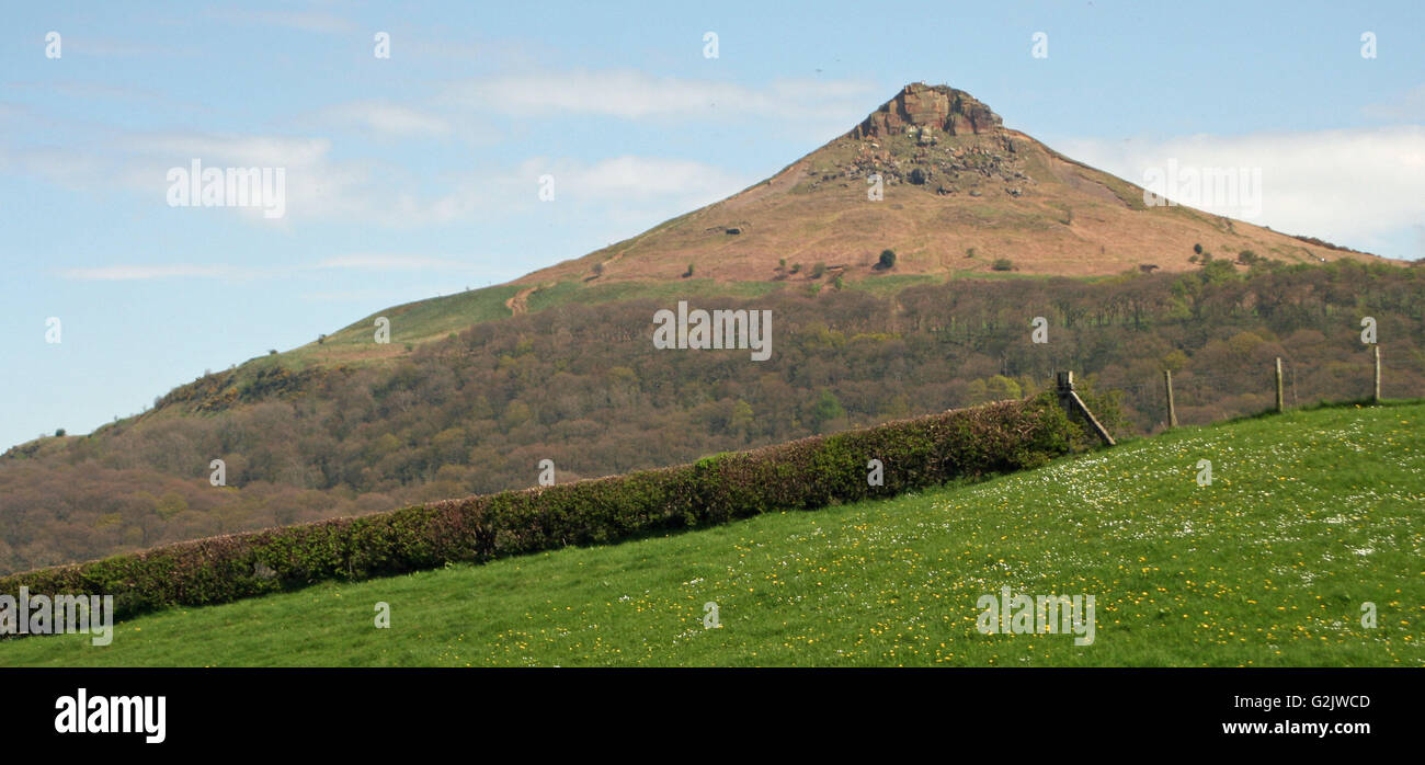 Roseberry Topping, North Yorkshire Foto de stock