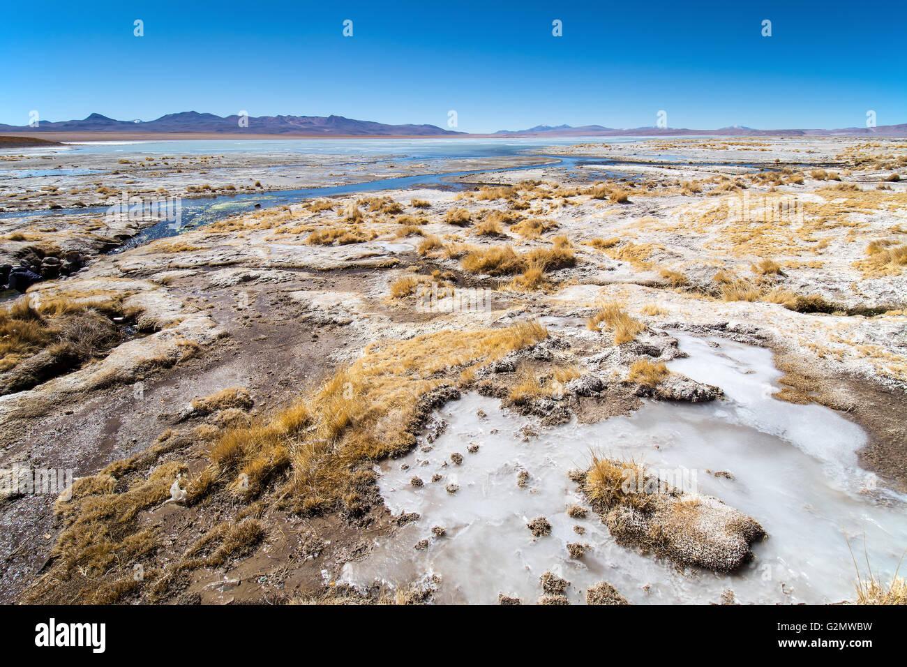 Orilla de la Laguna Hedionda, recubiertos con sal y hielo, en Uyuni, Altiplano, Bolivia Imagen De Stock