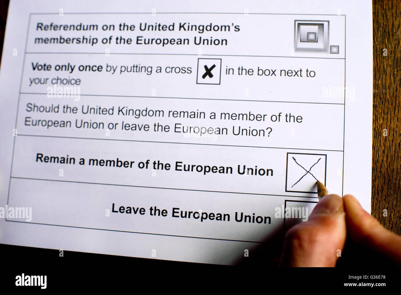 Referéndum sobre la adhesión de la Comunidad Europea. Joven rellenando el voto por correo. Imagen De Stock