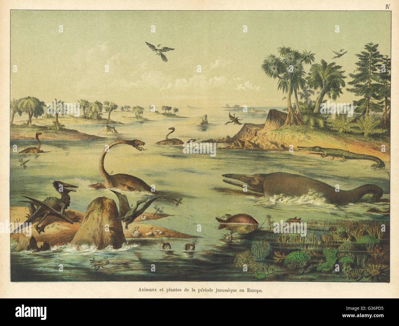 Los animales y plantas de la época jurásica en Europa. Fecha: AEC Imagen De Stock
