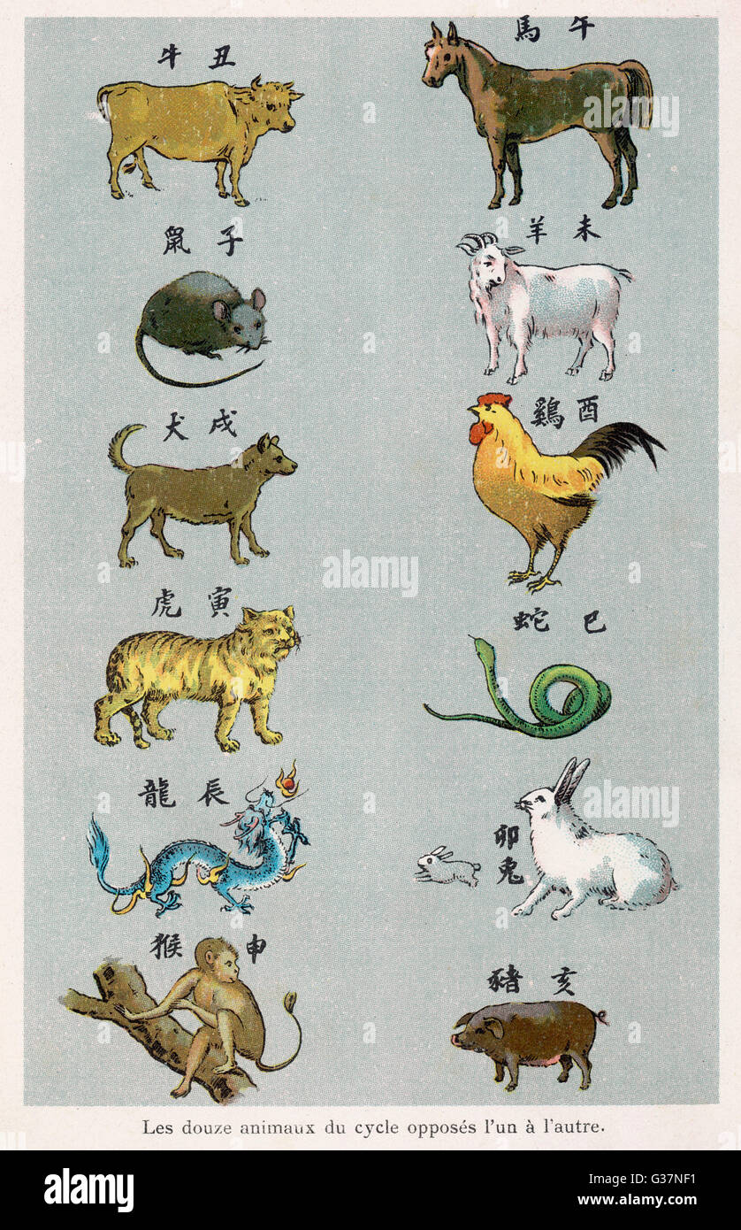 El 12 criaturas del Zodíaco Chino colocadas en pares opuestos Imagen De Stock