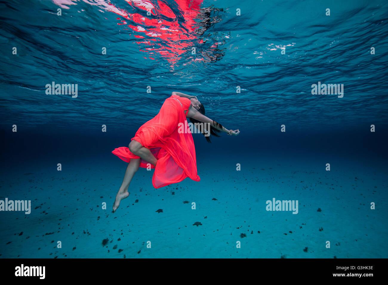 Mujer en el vestido rojo subacuático Foto de stock
