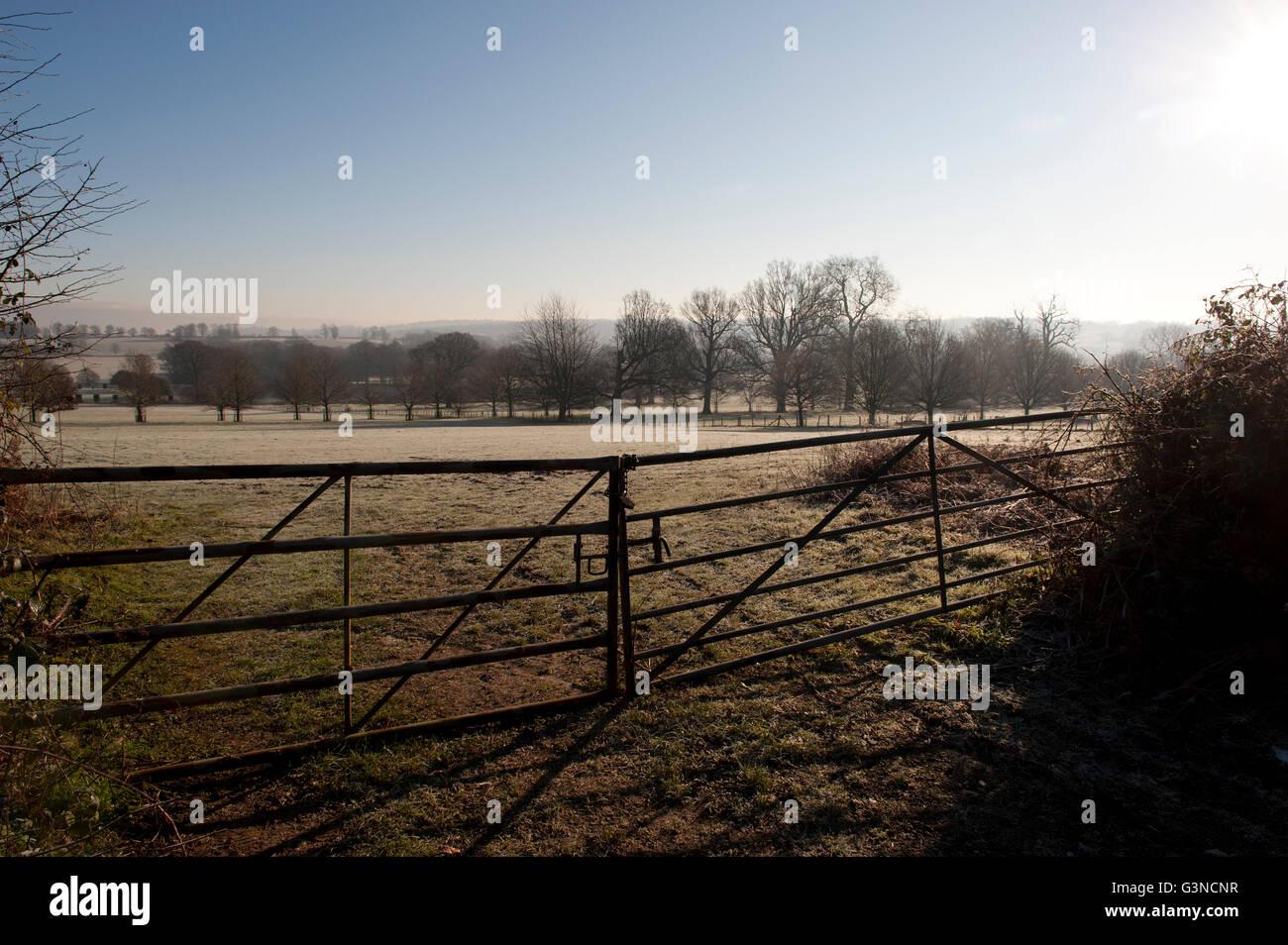 Kent en invierno, REINO UNIDO Foto de stock