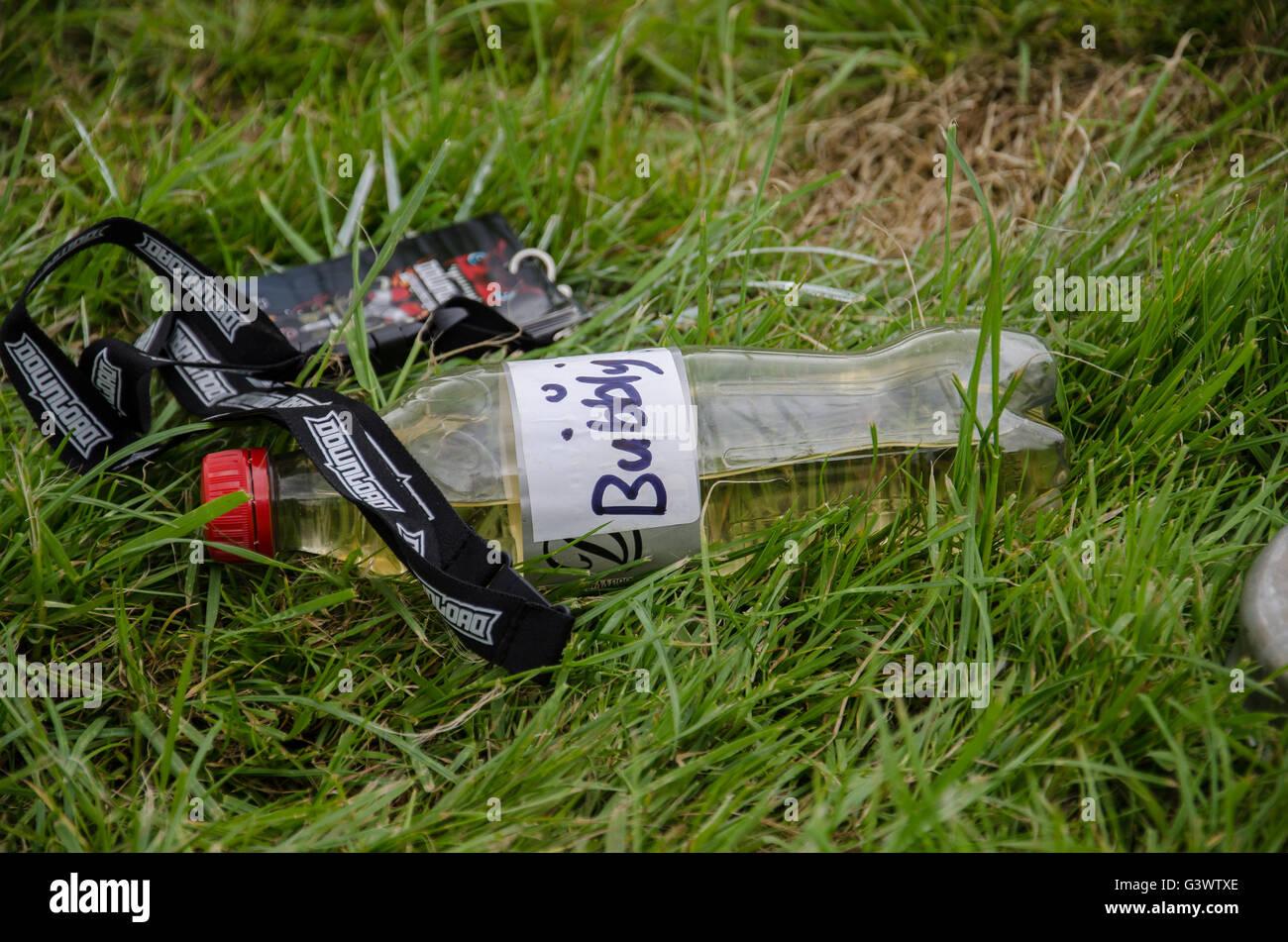 Descargar music festival landyard y botella de champán en la hierba camping Imagen De Stock