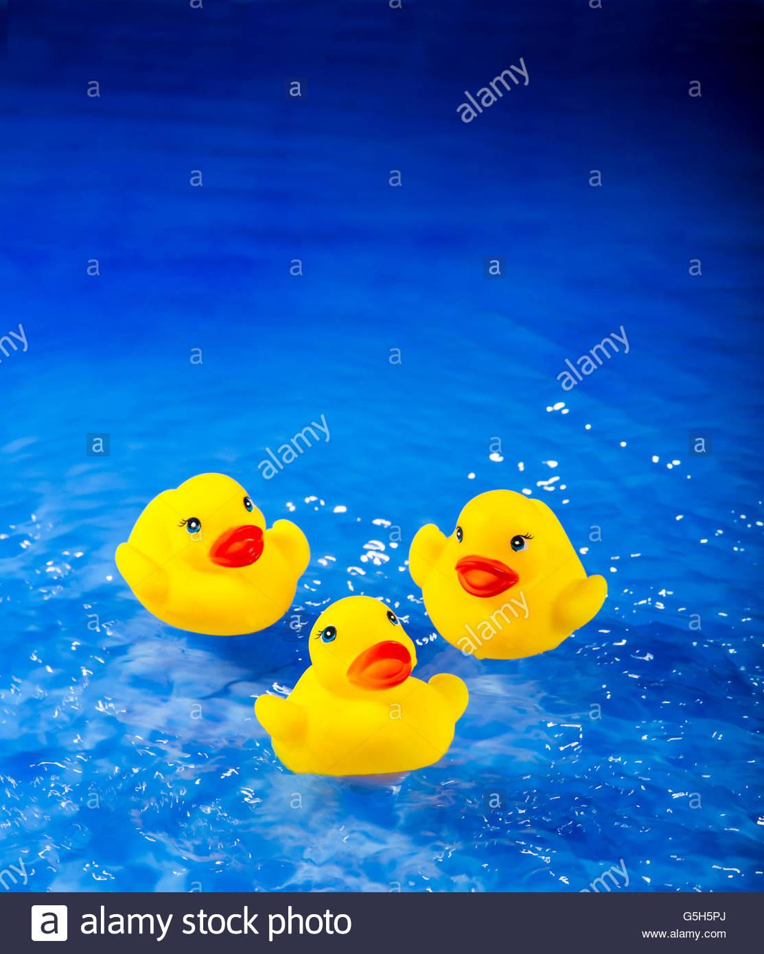 Tres patos amarillos en el agua azul. Imagen De Stock