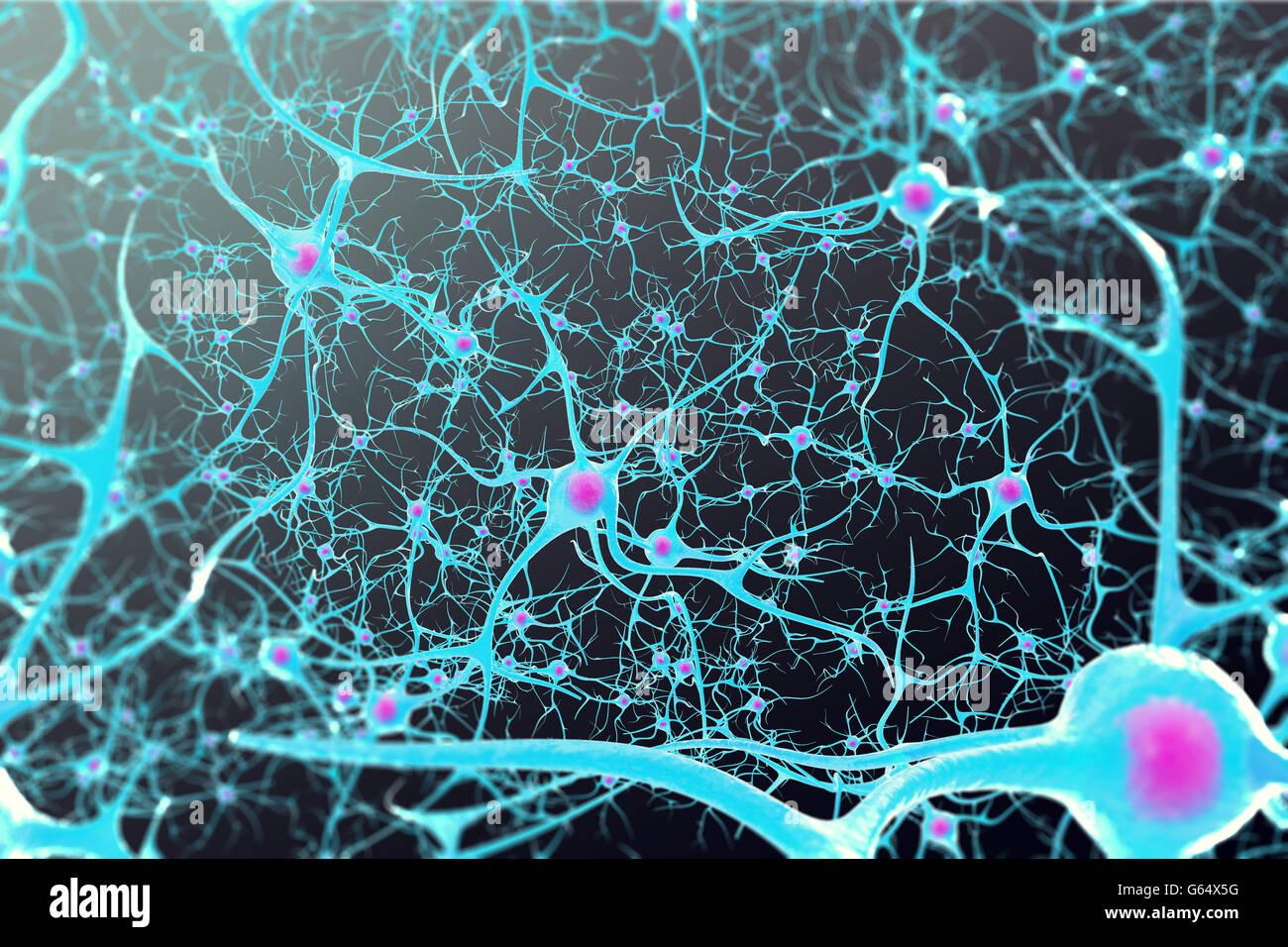 Las neuronas en el cerebro con un núcleo interior sobre fondo negro. Ilustración 3d Imagen De Stock