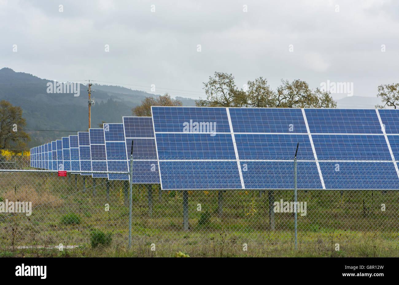 El Valle Sonoma, California paneles solares para ahorrar electricidad en bodega cerca de Kenwood Imagen De Stock