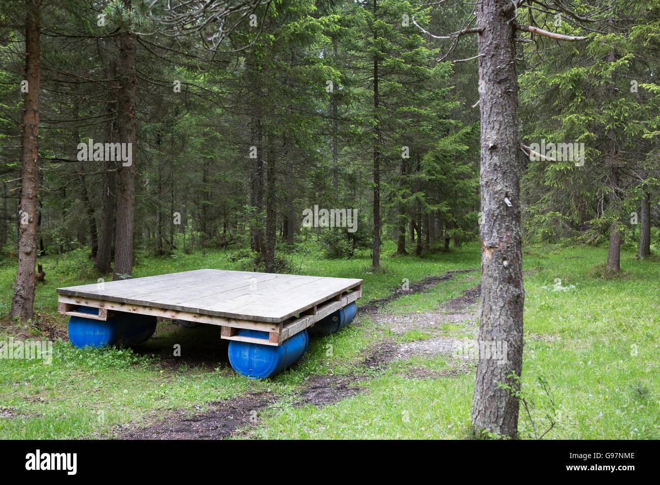 Una balsa abandonada en un bosque Imagen De Stock