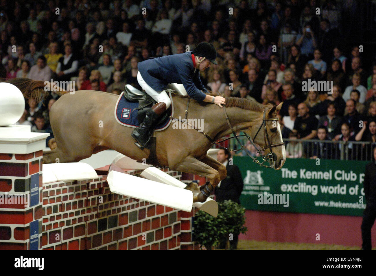 Equitación - London International Horse Show - Olympia Exhibition Halls - Londres Imagen De Stock