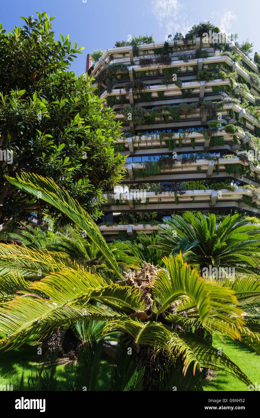 Jardín Vertical en las paredes de una torre, Barcelona. Cataluña. España, Junio de 2013. Imagen De Stock