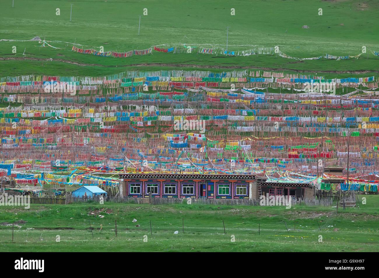 Banderas de oración budista colorido edificio circundante, Shiqu Serxu, condado, provincia de Sichuan, China, Imagen De Stock