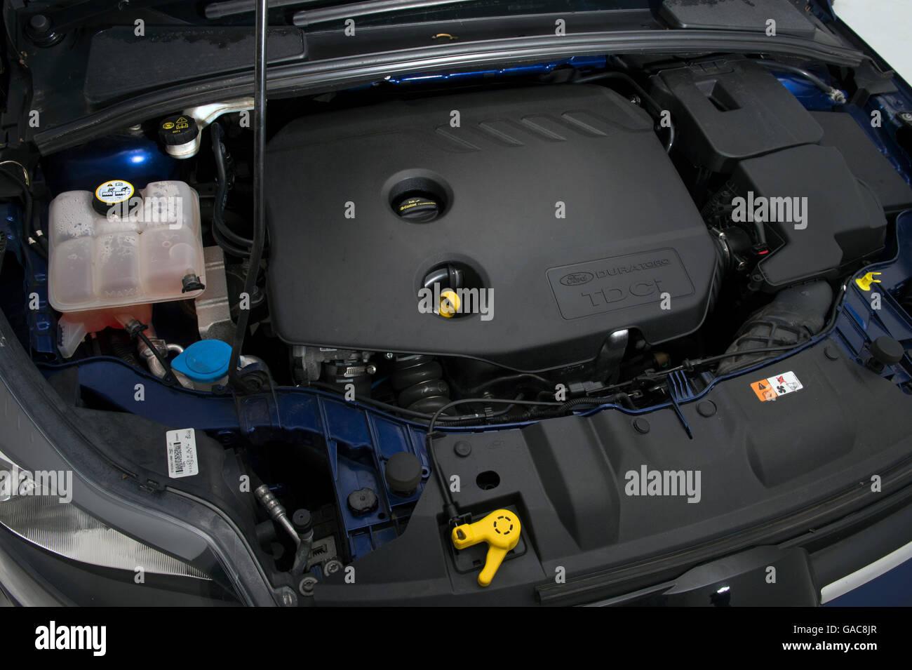 2014 Ford Focus Imagen De Stock