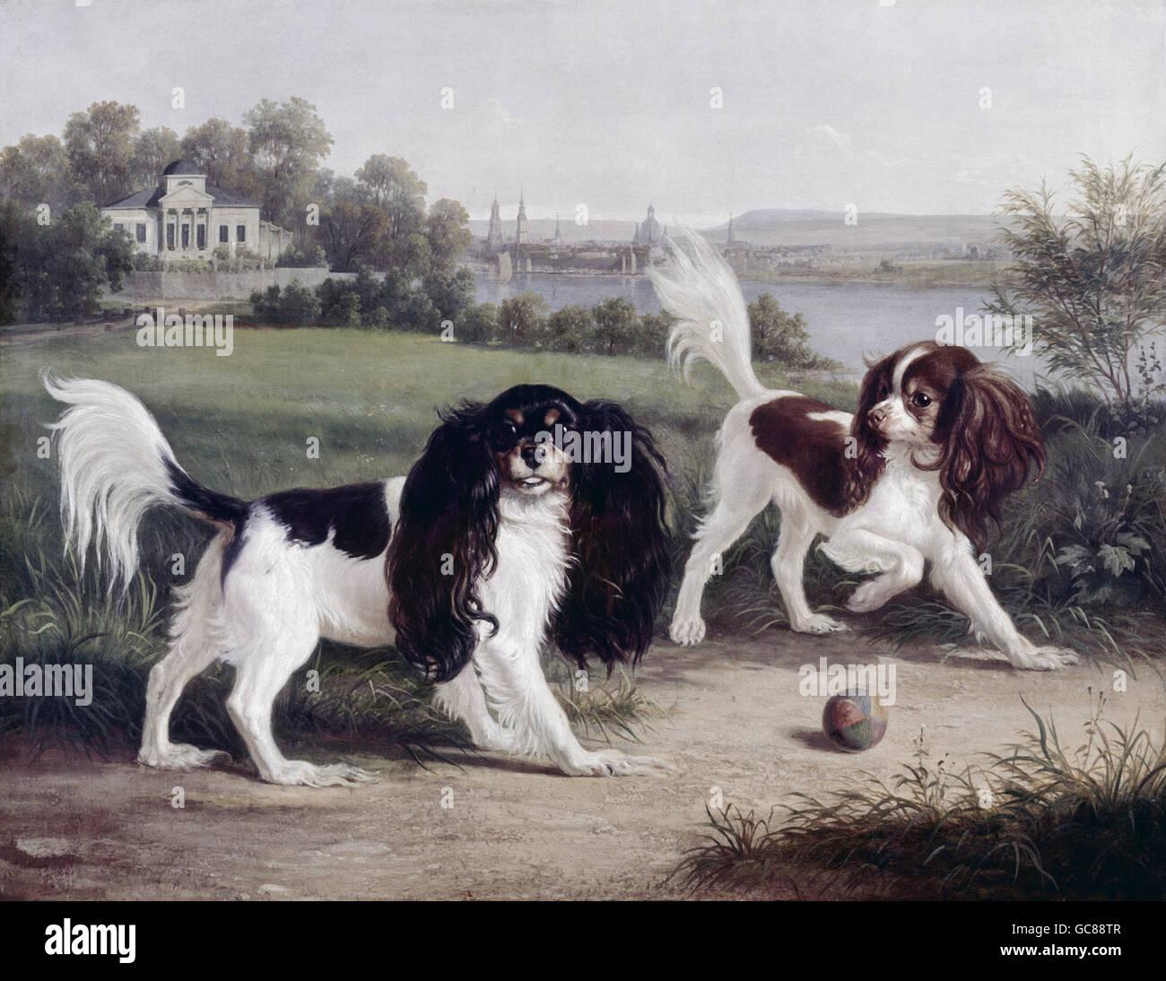 """Bellas artes, Wegener, Johann (1812 - 1879), pintura, """"Zwei King-Charles-Hunde vor Dresden' (Dos Cavalier Imagen De Stock"""