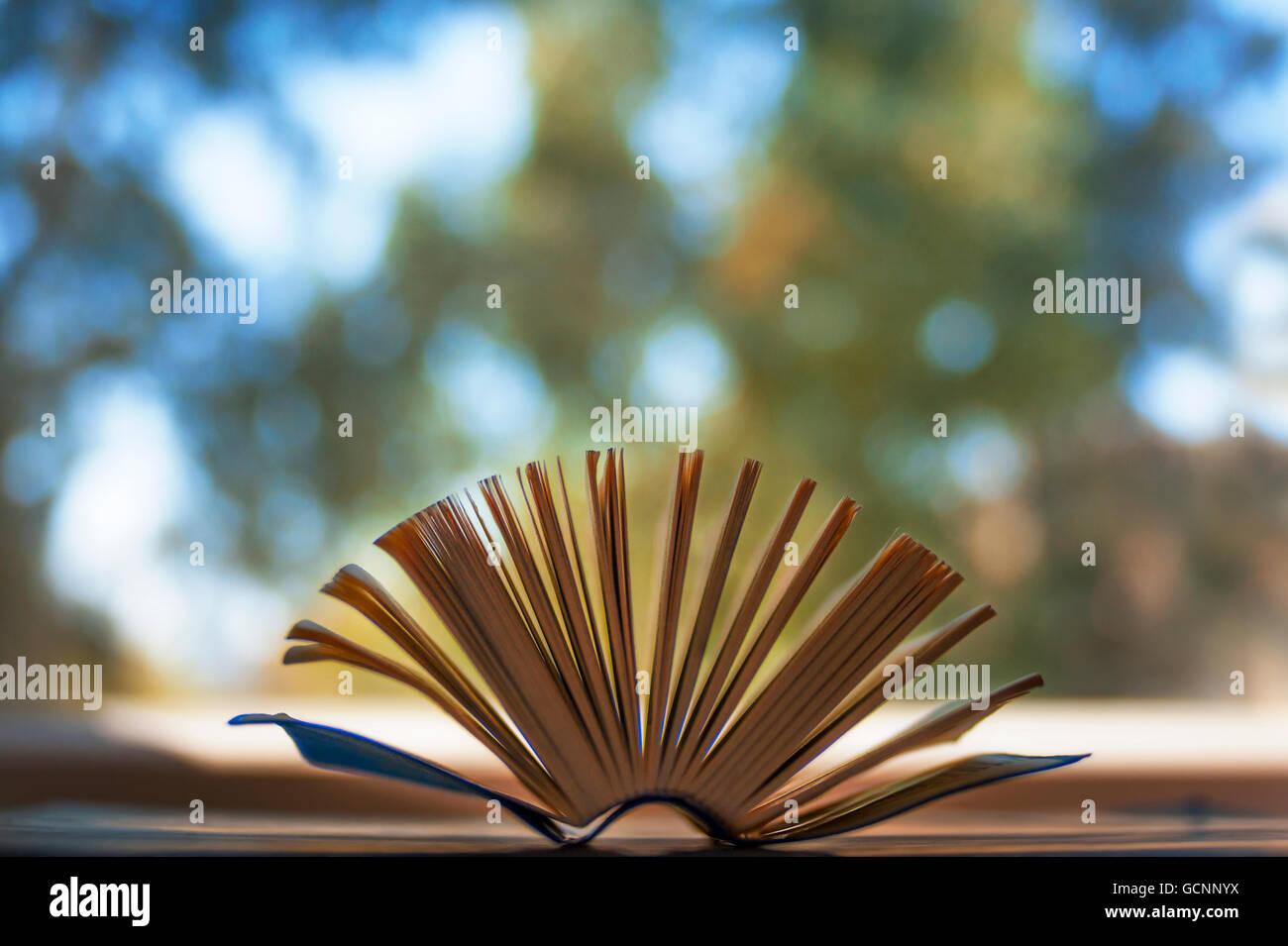 Pequeño libro primer plano con páginas abiertas y bokeh de fondo. Foto de stock