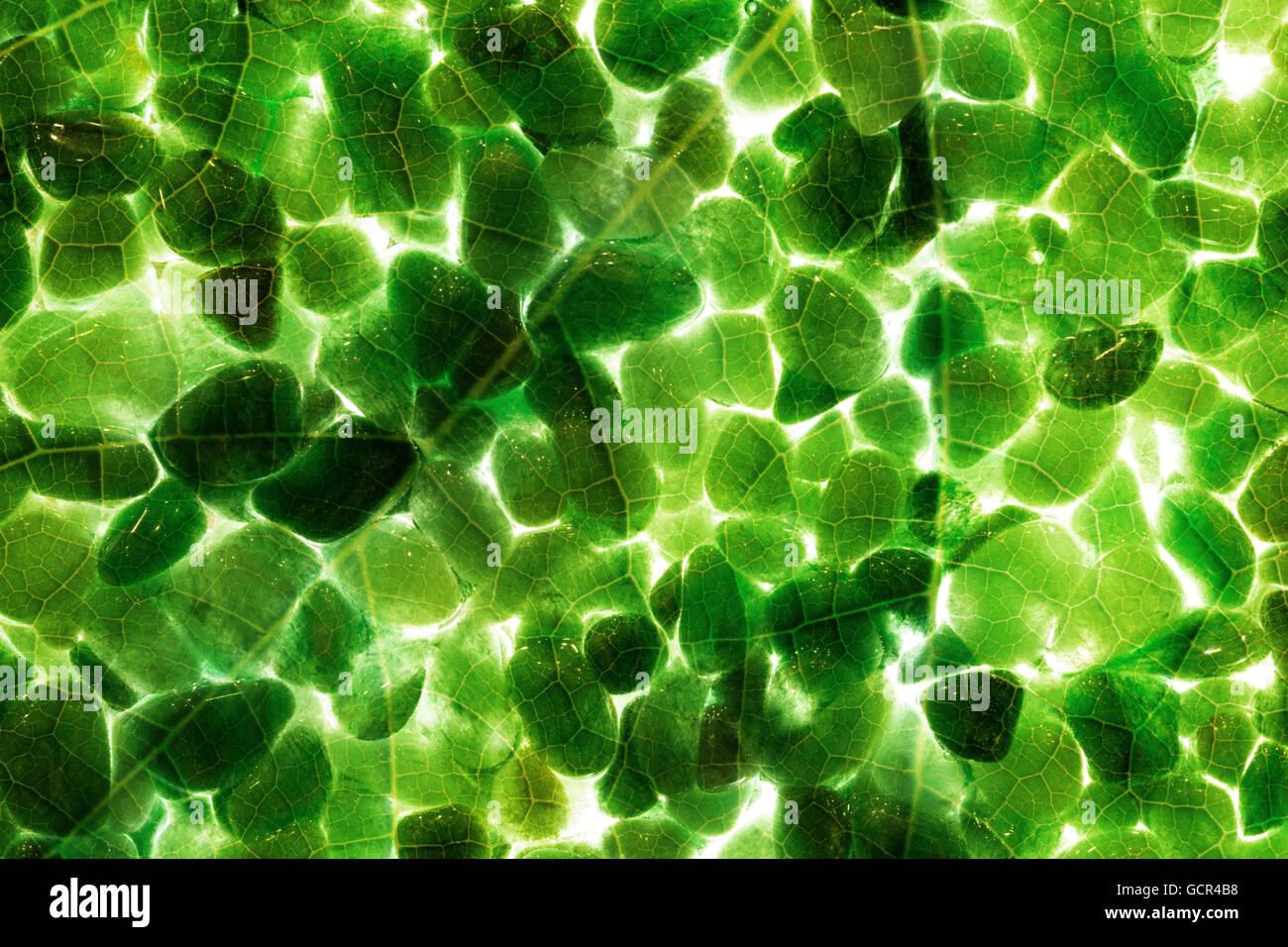 Piedras preciosas con formato completo reflejo de la estructura de las venas de una hoja, con una luz de fondo, iluminándolos con countours. Foto de stock