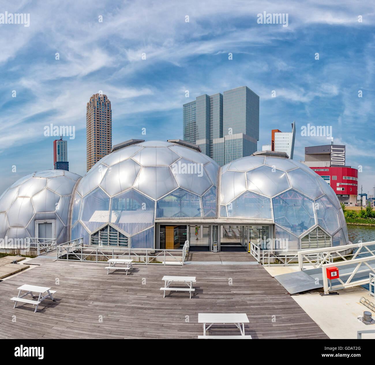 Rotterdam,moderna de altos edificios de oficina y el pabellón flotante Imagen De Stock
