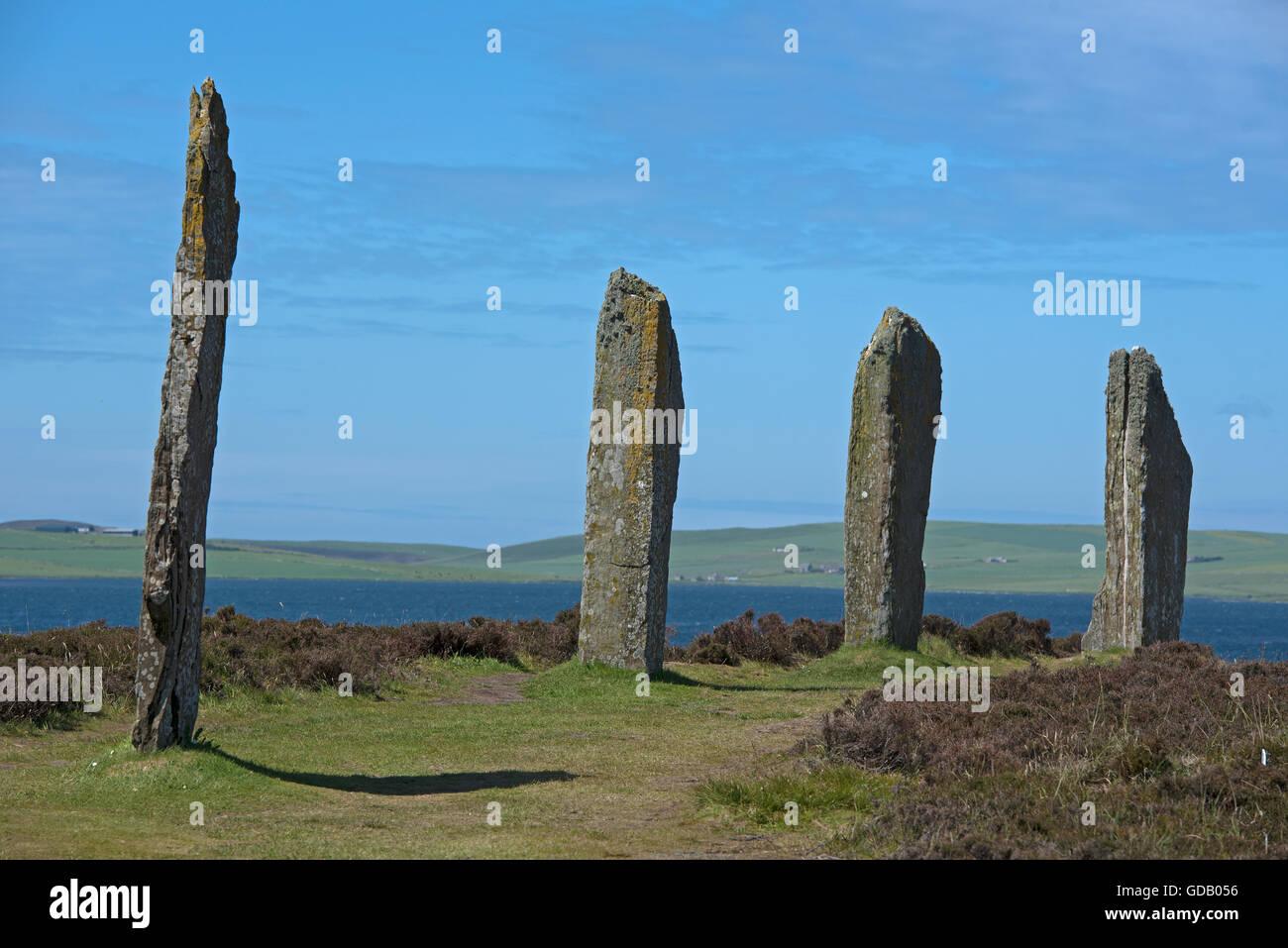 Cuatro de los restantes 27 Anillo de Brogan Standing Stones sobre un istmo entre los lagos de Stenness y Harray. SCO 10.597. Foto de stock