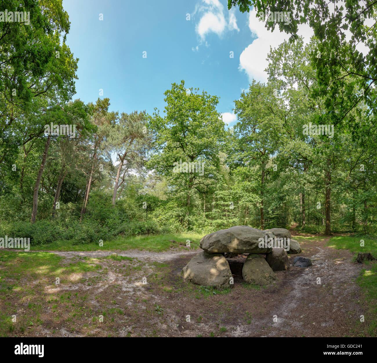 Annen,Drenthe,tumba megalítica en la silvicultura Schipborg Foto de stock